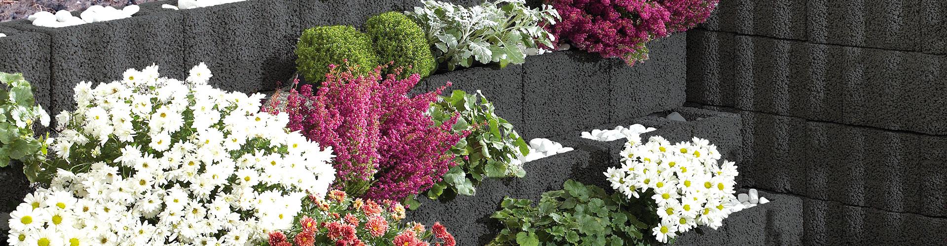 Kann Bausysteme Begrunung Von Pflanzwanden Mauerkronen